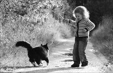 фотография девочка и кошка