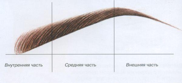 Как выбрать идеальную форму бровей