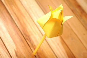 готовый тюльпан фото