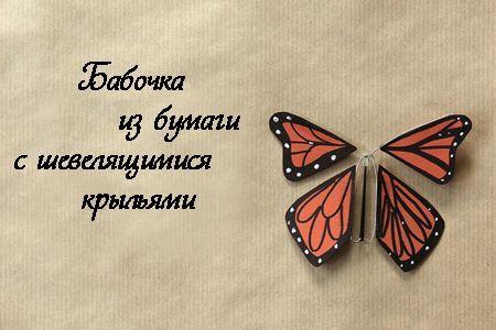 Бабочка с шевелящимися крыльями фото