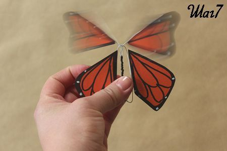 Крепим крылья бабочки к ее телу фото