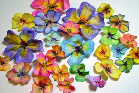 цветы готовы фото