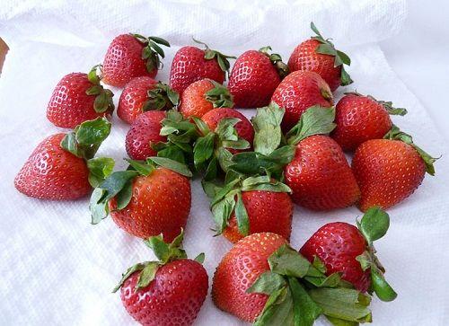 моем и просушиваем ягоды фото