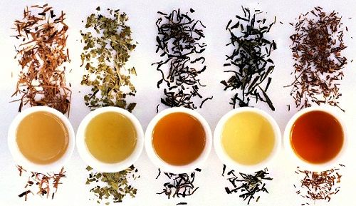 чай из Гоа фото