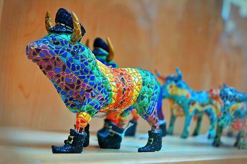 испанские быки фото