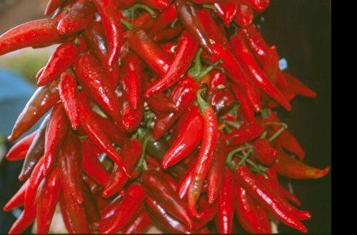 сушеный перец из Венгрии фото