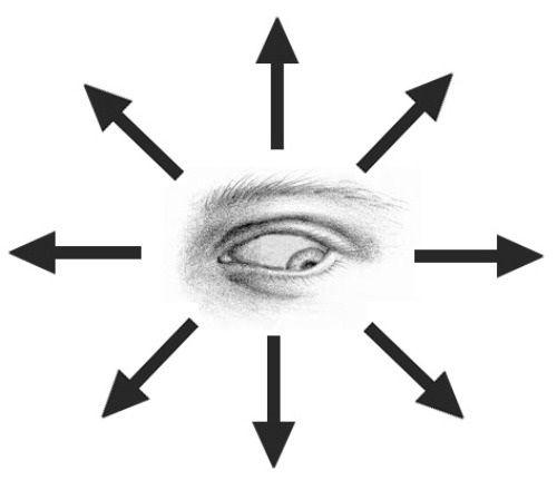 вращение глазных яблок фото