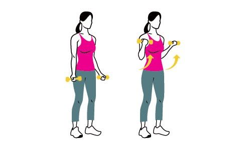 упражнение на бицепсы фото