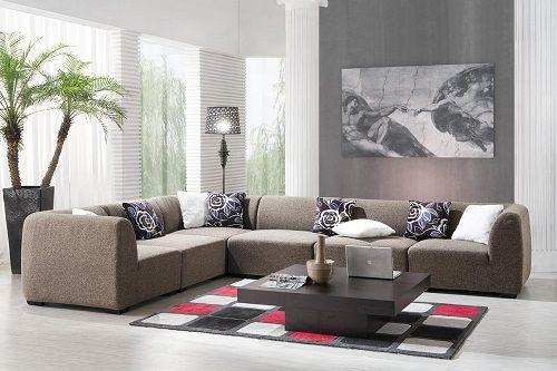 растения в гостиной фото