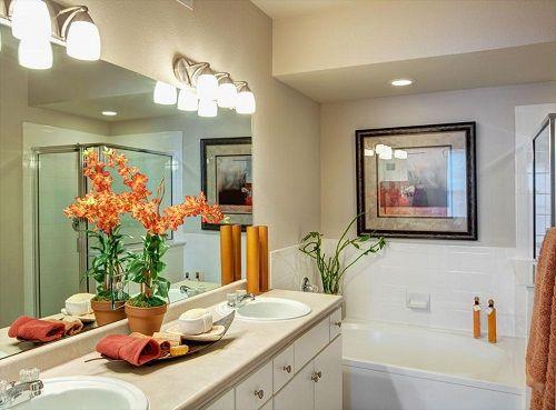 растения в ванной фото