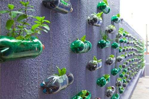 вертикальное садоводство с помощью пластиковых бутылок фото