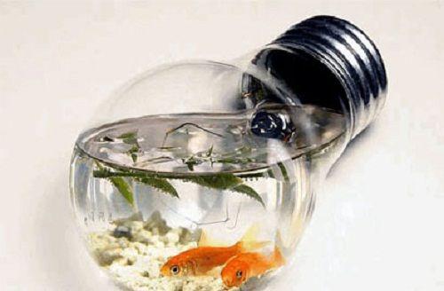 аквариум из лампочки фото