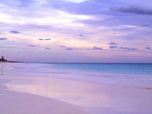 Pink Sands фото